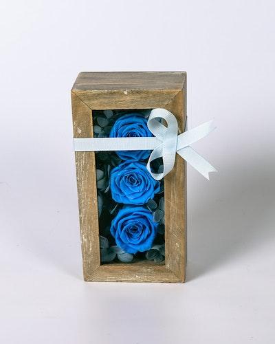 Mini Rosbox - Blå