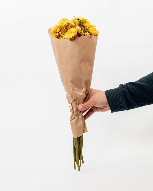Torkade Helichrysum - Gul