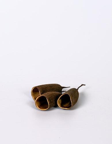 Seru-trompeta-liten -  Naturell