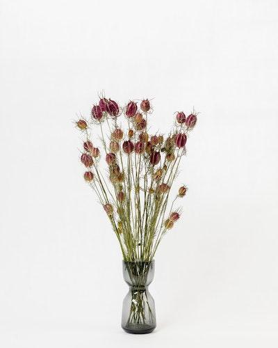 Nigella - Naturell röd