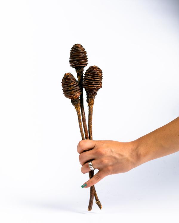 Göteborg - Stockholm - Sverige - Online - Beställ - Snabb leverans - Billigt frakt - Torkade blommor- Eterneller - Online - Foreverflora.se