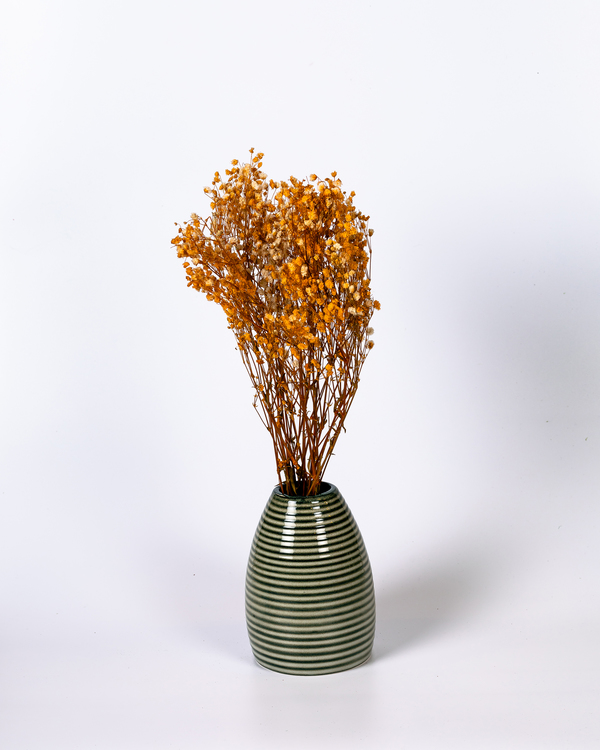 Brudslöja (gypsophila) - Orange