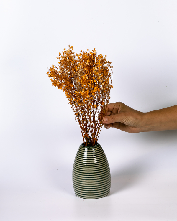 Gypsophila - Orange