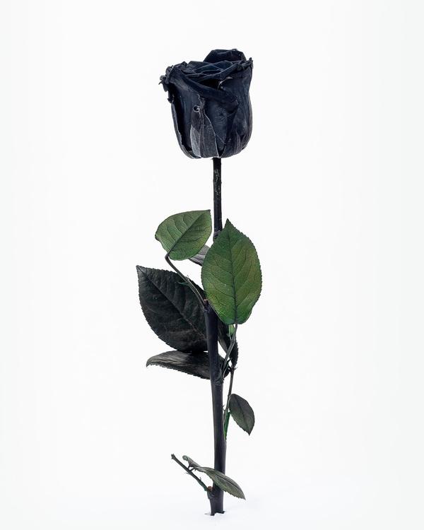 Göteborg - Stockholm - Sverige - Online - Beställ - Snabb leverans - Billigt frakt - Evighets rosor - Evighets blommor