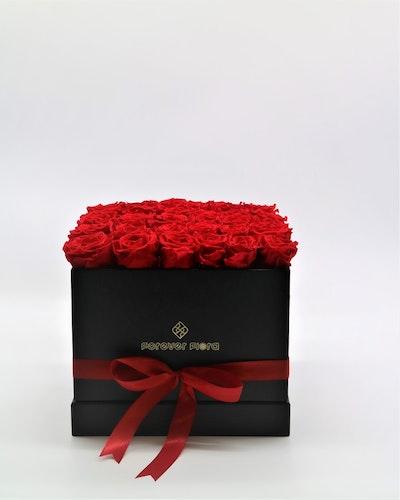Rosbox Large - Röd