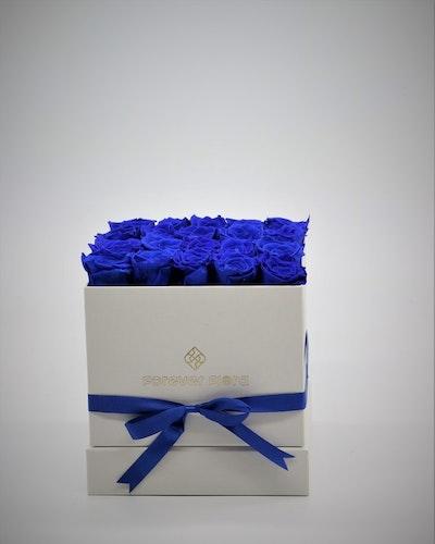 Rosbox Medium - Mörkblå