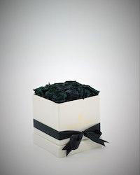 Rosbox Small - Svart