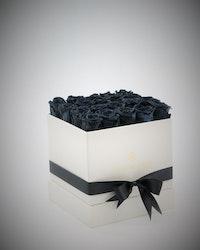 Rosbox Medium - Svart