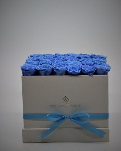 Rosbox Large - Blå