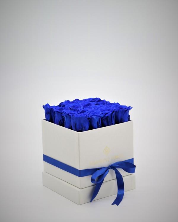 Rosbox Small - Mörkblå