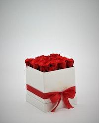 Rosbox Small - Röd