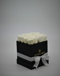 Rosbox Small - Vit