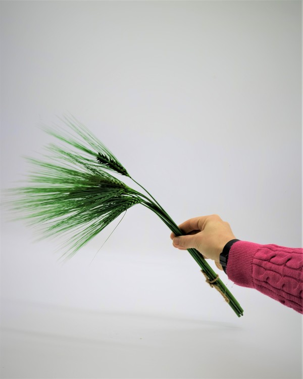 Inredning - Hem inredning - Hemmet - Klassisk - Foreveflora.se -Torkade blommor - Eterneller