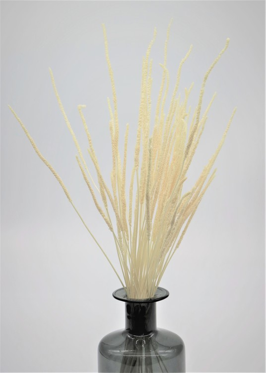 Braided gräs - Vit