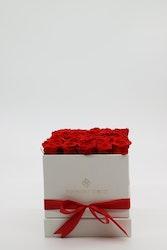 Rosbox Medium - Röd 18 x18 cm