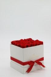 Rosbox Medium - Röd