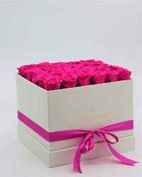 Rosbox Large - Rosa