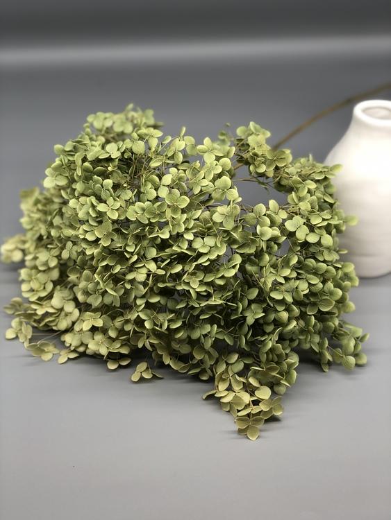 Hydrangea - Naturell Grön