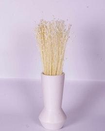 Jazilda - Blekt vit - Torkade blommor