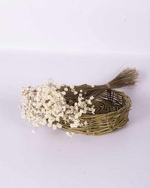 Glixia - Naturell vit - Torkade blommor