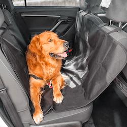 Sätesskydd för husdjur
