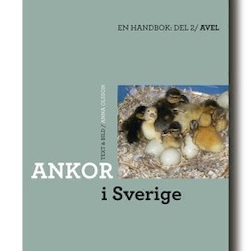Ankor i Sverige Del 2