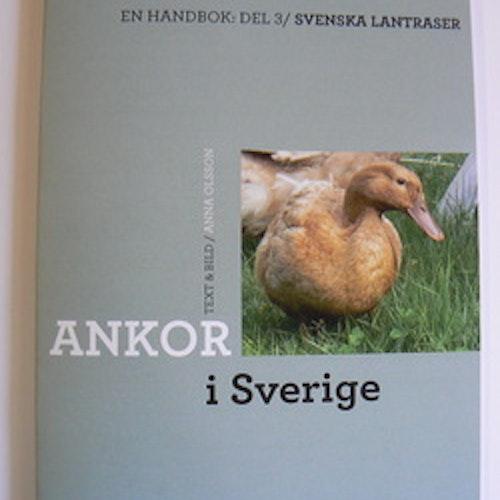 Ankor i Sverige Del 3