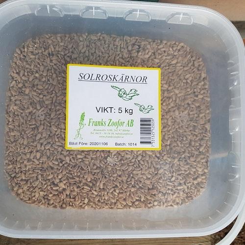 Solroskärnor i hink, 5 kg Nyhet!