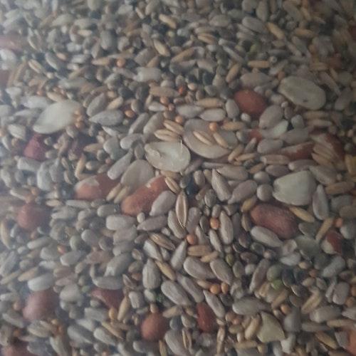 Skalfri mix Vildfågelblandning 10 kg Nyhet!