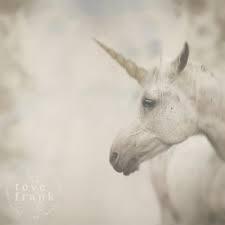 Tove Frank Kort 'Unicorn' 7x7