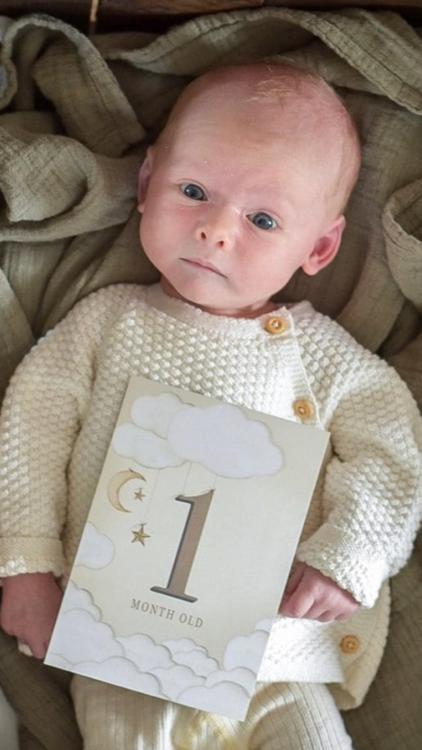 Mrs Mighetto Baby Månadskort 24-pack