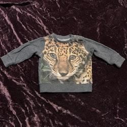Grå collegetröja med leopardtryck från Cubus stl 62