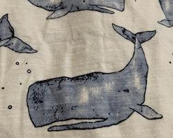 Vit kortärmad body med blått valmönster från Newbie stl 56