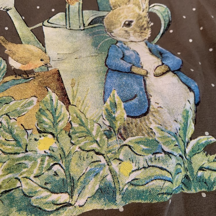 Brun tröja med vita prickar och kanintryck av Beatrix Potter samt ett par bruna mjukisbyxor från HM stl 80