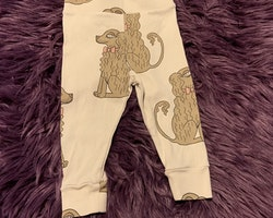 Gräddvita leggings med bruna spaniels från Mini Rodini stl 62