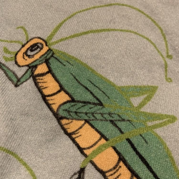 Ljusblå tröja och byxor med insektstryck från Mini Rodini stl 56/62