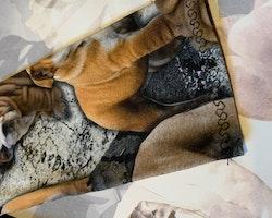 Engelsk bulldogmönstrad tröja stl 98-104