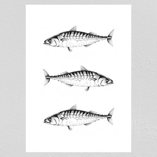 Tre Makrillar Poster