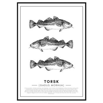Torsk Poster