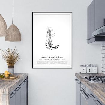 Nordhavsräka Poster