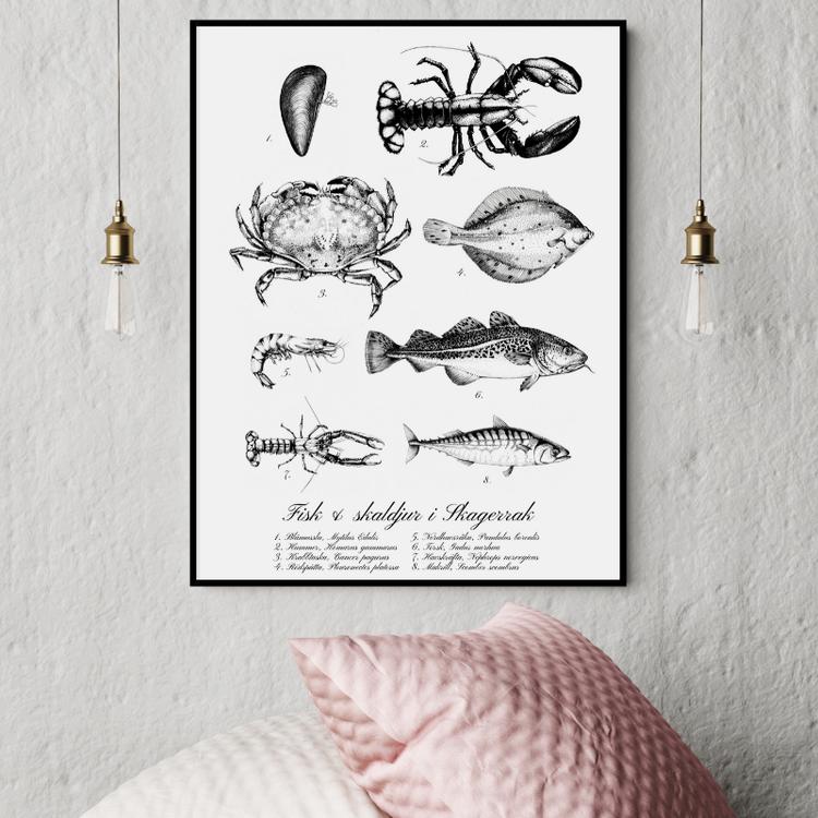 Fisk & Skaldjur Poster