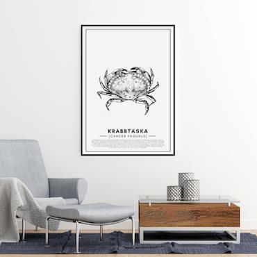 Krabba Poster