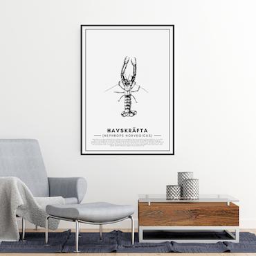 Havskräfta Poster