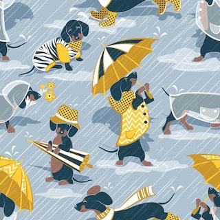 FÖRHANDSBOKNING! Bomullsjersey Ready For A Rainy Walk