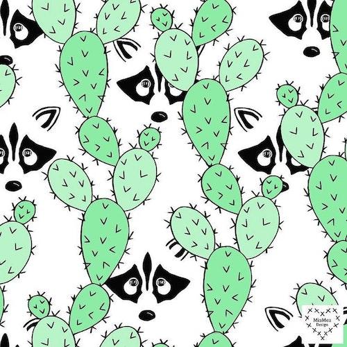 Bomullsjersey Peekaboo Racoons Mint Green