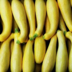 Squash Yellow Golden Fröpåse