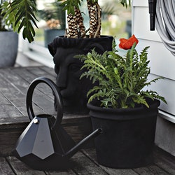 Onyx Watering Can