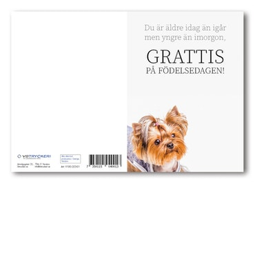 Grattiskort - Doggy