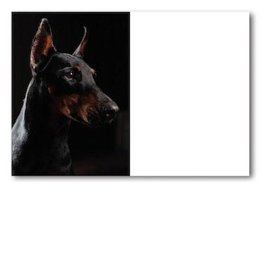 Grattiskort - Black Dog
