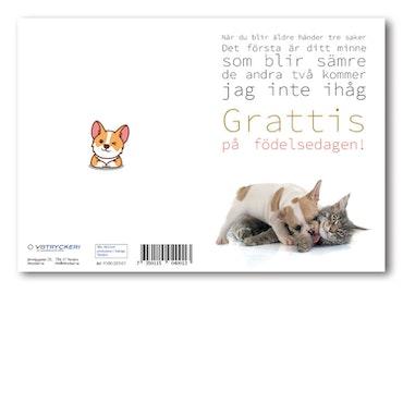 Grattiskort - Busiga Hundar